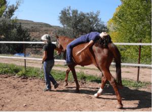 Vincula2: Terapia con caballos. De Verónica Aracil.