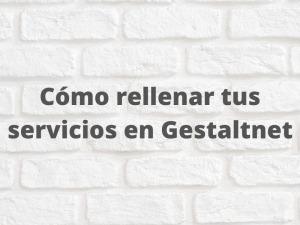 Cómo rellenar tus servicios en Gestaltnet